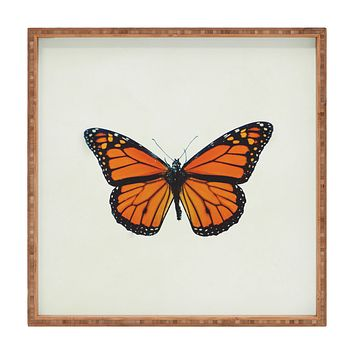 Chelsea Victoria The Queen Butterfly Square Tray