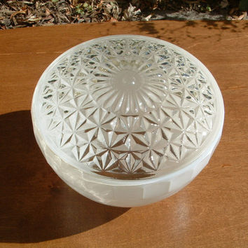 Home Restoration Vintage Art Deco Frosted Light Shade | Home Restoration Light Cover | Home Remodel | Bird Feeder | Back Porch Lamp Shade