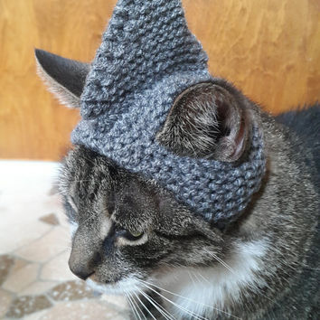 Shark Cat Hat