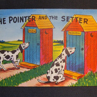 Vintage Humorous Postcard The Pointer and the Setter Dogs Outhouses Gender Specific 1950's