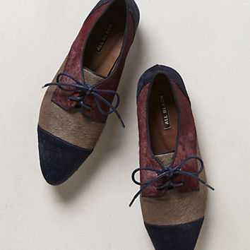 Pointed Pony Hair Oxfords