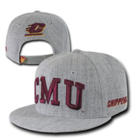 College University Central Michigan State Hat Sports Baseball Cap WRA 1003