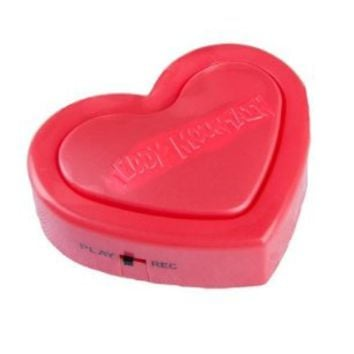 """Red """"Love Heart Recordable"""" 18 Second Recordable Sound Module for Stuffed Animal Insert, Craft Projects and Scentsy Buddies"""