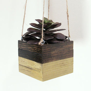 Hanging Planter, Succulent Planter, Wood Planter, Modern Planter, Air Plant Holder, Geometric Planter, Indoor Planter, Succulent Pot, Gold