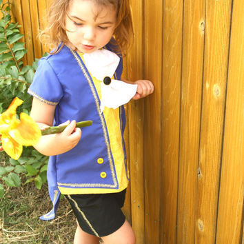 Disney Beauty and the Beast, Beast inspired shirt/ outfit/clothes/costume/clothes for boys sizes 5678