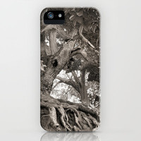 1000 years old chestnut tree iPhone Case by Guido Montañés