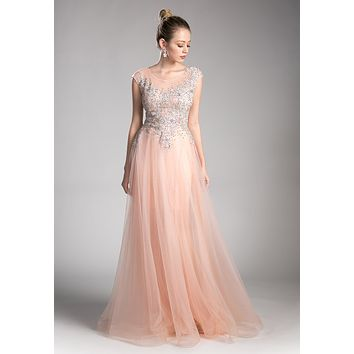 Cap Sleeved Illusion Appliqued Long Formal Dress Rose
