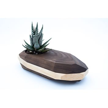 Geometric Wooden Planter -- Unique Wood Cactus Succulent Pot Terrarium