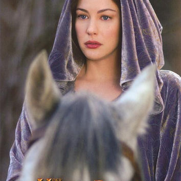 Lord of the Rings: The Return of the King (German) 11x14 Movie Poster (2003)