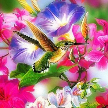 5D Diamond Painting Hummingbird Kit