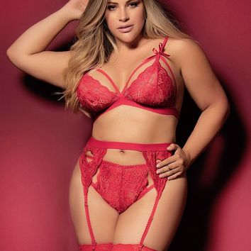 Plus Size Sexy Bra and Panty Garter Sets