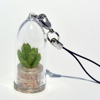 Living Plant Necklace - Apple Cactus - Live Succulent Plant Necklace. Terrarium Flower Necklace key chain -Boo-Boo Plant