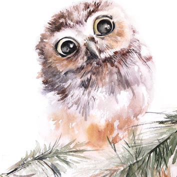 Baby Owl Bird Watercolor Painting Art Print, Owl Watercolor Painting Wall Art