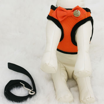 Orange Dog Harness with bow and a black leash, charm, Love and Beloved, Birthday Gift