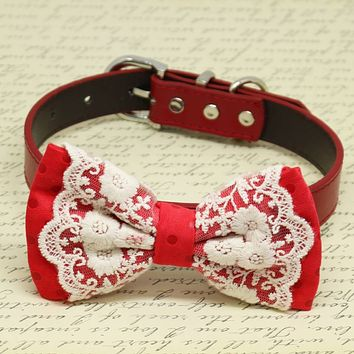 Red Polka Dots with Lace Dog Bow Tie collar, Pet wedding accessory, Puppy birthday gift