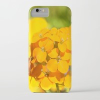 Orange Delight iPhone & iPod Case by Lena Photo Art