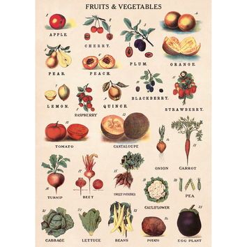 Fruits And Vegetables Chart Vintage Style Poster