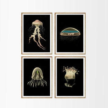 Jellyfish Nautical Art Print SET of 4. A4 Size UNFRAMED Nautical Beach Sea Ocean Underwater Life Home Decor Antique Illustration Wall Art