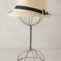 Picnic Fedora by Anthropologie Cream One Size Scarves