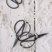 Forged Iron Utility Shears, Two Sizes