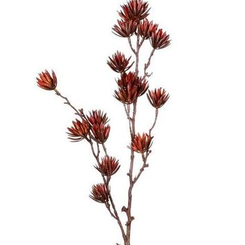 """Artificial Thistle Spray in Burgundy Rust - 36"""" Tall"""