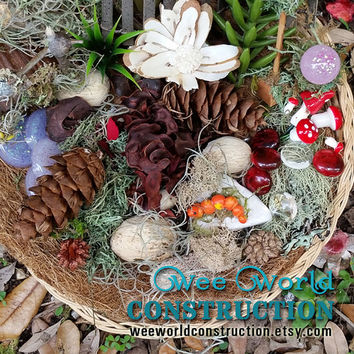 Fairy Garden Kit, Fairy Garden Supplies, Delux Fairy Kits, Fairy House Kit, Miniature Garden Supplies, Terrarium Kit, Miniature Garden Items