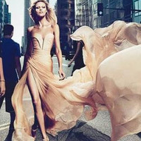 Anja Rubik Celebrity Prom Bal Long Maxi Champagne Silk Dress from Elie Saab ad, any size