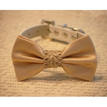 Cream Wedding Collar Dog Bow tie, Country Lovers