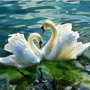 5D Diamond Painting Green Water Swans Kit