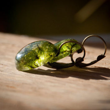 "Earrings ""elf"" of resin jewelry with green moss."