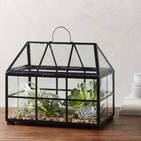 METAL AND GLASS TERRARIUM