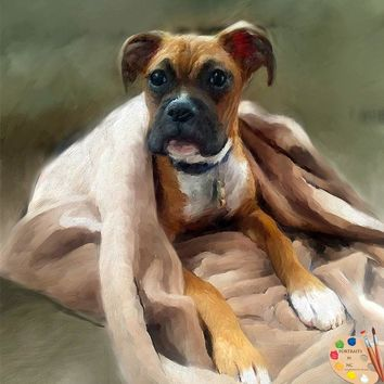 Boxer Dog Portrait 316