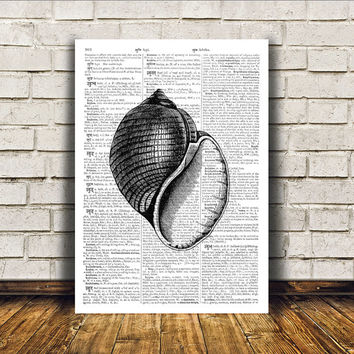 Nautical art Beach house decor Marine print Seashell poster RTA377