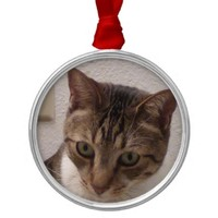Tabby Cat Premium Round Ornament