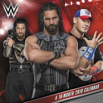 WWE Wall Calendar, MMA, Boxing & Wrestling by ACCO Brands