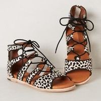 Dalmatia Lace-Up Sandals by Gee Wawa Black & White