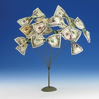 Gifts - Cash Tree