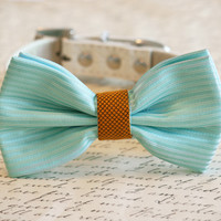 Tiffany Blue and Gold Wedding Dog Collar, Tiffany Blue Pet wedding accessory, Tiffany Blue Dog Bow tie, Tiffany Blue and Gold Wedding