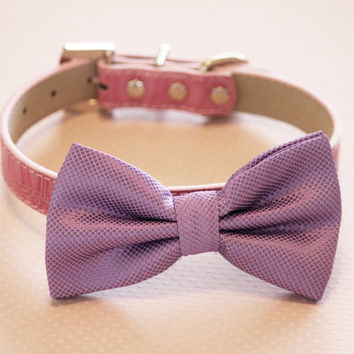 Purple wedding dog collar,  Purple Dog Bow tie with High Quality Pink Leather Collar, Cute pink dog bow tie, Love Purple