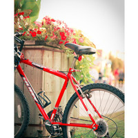 Red Bicycle fine art photgraph sunny summer by GoldenSection