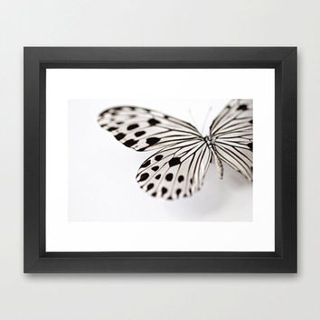 Nymph 2- Butterfly Photography- Ideopsis Gaura- Black and White Butterfly Photo- Macro Photograph- Butterfly Art- 8x12 Fine Art Print