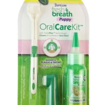 DOG HEALTH - DENTAL PRODUCTS - FRESH BREATH PUPPY ORAL CARE KIT  2OZ