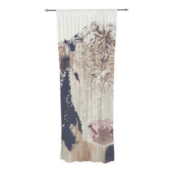 "Debbra Obertanec ""Snowy Cow"" Black White Decorative Sheer Curtain"