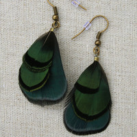Blue Amhurst Pheasant and Peacock green feather earrings