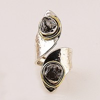 Campo de Cielo Meteorite Sterling Silver Two Tone Adjustable Ring