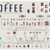 The Compendious Coffee Chart Print 24x18