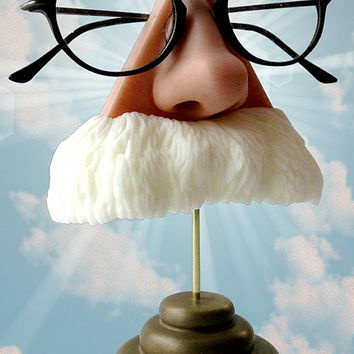 Nose eyeglasses holder, white mustache, Albert Einstein, Mark Twain, God almighty, eyewear display, sunglasses stand,