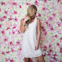 Harlow Lace Shift Dress In Ivory