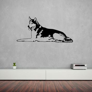 Husky Wall Decal