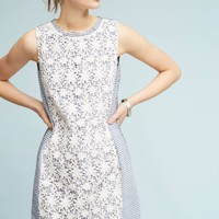 Lace-Mix Dress